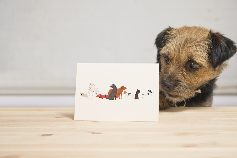 Dogs Trust card with envelope, £2.30, by Fenella Smith at various stockists and available online