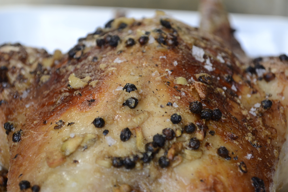 closeup_macro_peppercorn_chicken