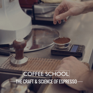 Department of coffee and social affairs, coffee course london, coffee classes london, barista classes london, latte art class london
