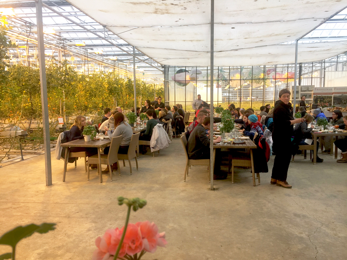 Using combinations of geothermal energy naturally purified water and artificial light Icelandic farmers have been mimicking bright balmy spring days by ... & Friðheimar Tomato Farm and Restaurant Iceland | GastroGays