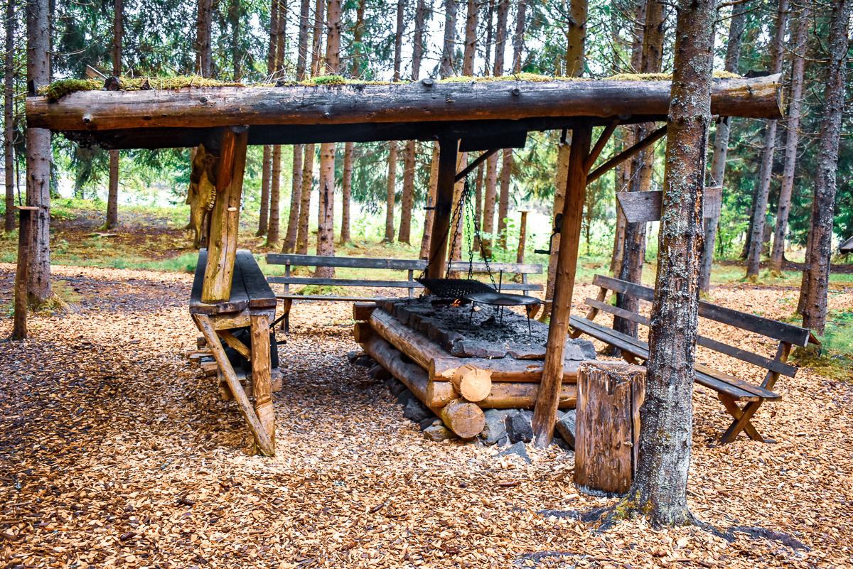 cooking fire naturbyn sweden varmland